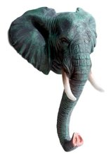 Wandhaak olifant (Africa)